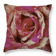 Close Up Pink Red Rose Throw Pillow
