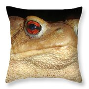 Close Up Portrait Of A Common Toad Throw Pillow