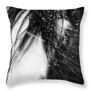 Close Up Portrait Of A Horse In Falling Snow Throw Pillow