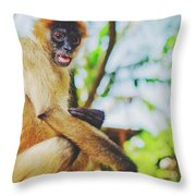 Close-up Portrait Of A Nicaraguan Spider Monkey Sitting And Looking At The Camera Throw Pillow