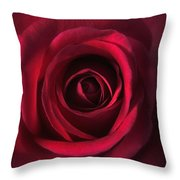 Close Up Red Roses Flowers Art Work Photography Throw Pillow