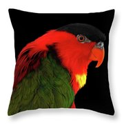 Close-up Yellow-bibbed Lory, Lorius Chlorocercus, Isolated On Black Background Throw Pillow by Sergey Taran