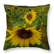 Close View Of A Sunflower At The Edge Throw Pillow