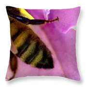 Close View Of Single Honey Bee Throw Pillow