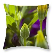 Close View Of Two Yellow Symphony Throw Pillow