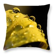 Close View Of Water Droplets Throw Pillow