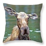 Close Wet Moose Throw Pillow