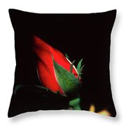 Closed To Darkness Throw Pillow