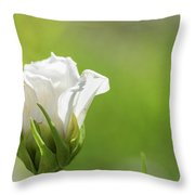 Closed White Flower. Throw Pillow
