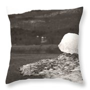 Closer Silo Berg Throw Pillow