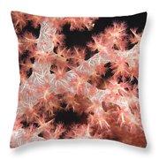 Closeup Detail Of Soft Coral Throw Pillow