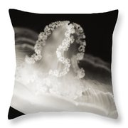 Closeup Jellyfish Throw Pillow