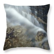 Closeup Maple Leaf And Decew Falls, St Throw Pillow by Darwin Wiggett