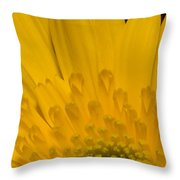 Closeup Of A Yellow Chrysanthemum Throw Pillow