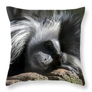 Closeup Of Black And White Angolian Primate Sleeping On Log Raft Throw Pillow