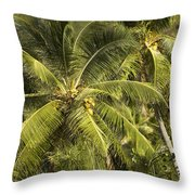 Closeup Of Coconut Palm Trees Throw Pillow
