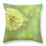Closeup Of Dandelion With Seeds Throw Pillow