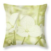 Closeup Of Hydrangea Flowers With Vintage Background Throw Pillow by Sandra Cunningham