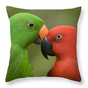 Closeup Of Male And Female Eclectus Throw Pillow