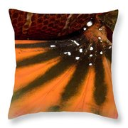Closeup Of The Colorful Surface Throw Pillow