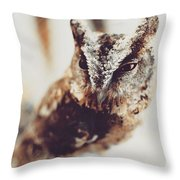 Closeup Portrait Of A Young Owl Looking At The Camera Throw Pillow