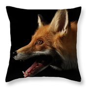 Closeup Portrait Of Red Fox In Profile Isolated On Black  Throw Pillow