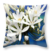 Closeup White Californian Flower Throw Pillow
