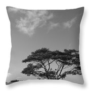 Cloud Shadow Throw Pillow