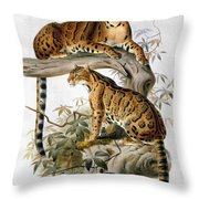Clouded Leopard, 1883 Throw Pillow