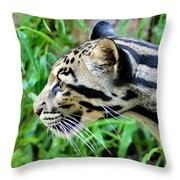 Clouded Leopard In The Grass Throw Pillow