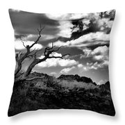 Clouds And A Tree Baw Throw Pillow