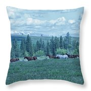 Clouds And Horses Throw Pillow