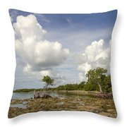 Clouds In The Keys 2 Throw Pillow