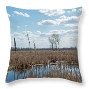 Clouds Of Cotton Throw Pillow