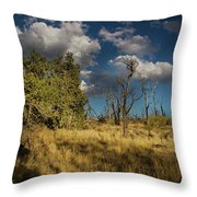 Clouds Over Mesa Verde Throw Pillow