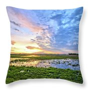 Clouds Over The Marsh 4 Throw Pillow