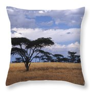 Clouds Over The Masai Mara Throw Pillow