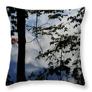 Clouds Tree Water Throw Pillow