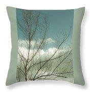 Cloudy Blue Sky Through Tree Top No 1 Throw Pillow