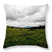 Cloudy Meadow Throw Pillow