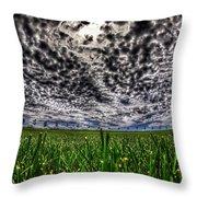 Cloudy Sky's Grassy Field Throw Pillow