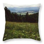 Cloudy Tatra Mountains Throw Pillow
