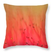 Cloudy Weather Throw Pillow