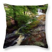 Cloughleagh Wood, Kilbride, Ireland Throw Pillow