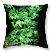 Clover Throw Pillow by Arla Patch