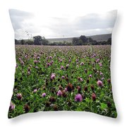 Clover Field Wiltshire England Throw Pillow