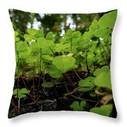 Clover In Montgomery Woods State Natural Reserve Throw Pillow