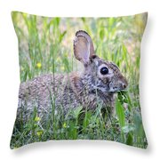Clover Is My Favorite Throw Pillow