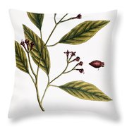 Cloves, 1735 Throw Pillow