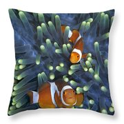 Clown Anemonefish Amphiprion Ocellaris Throw Pillow